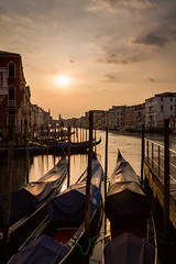 Venice awakes