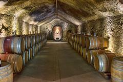 Buena Vista Winery, Sonoma (Jack Heald) Tags: california old travel nikon wine barrels sonoma tourist winery cave cellar buenavistawinery jackheald
