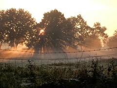 Good morning Schieven, september 29. (Harmen de Vries) Tags: netherlands sunrise nederland goodmorning drenthe assen ochtendgloren zonsopkomst pss:opd=1443547599