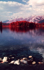 img008 (Photo Taker #9) Tags: infrared orangefilter colorinfraredfilm aerochrome