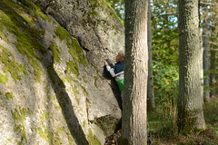 Kjugekull (Kristianstads kommun) Tags: wood tree nature freedom natur happiness boulder climbing skog bouldering höst atumn kristianstad klättring glädje idrott kjugekull frihet bäckaskog twentyhills