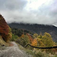 Varmost (Cristina Birri) Tags: autumn clouds nuvole sentiero autunno montagna dolomiti bosco friuli udine fornidisopra varmost