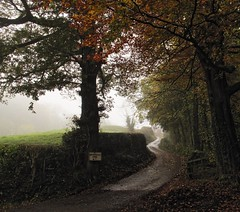 Shepherds Hill (Wizard Snaps) Tags: road autumn winter england leaves canon eos peace farm wideangle pride lane peacefulplace mycountry canonphotography canoneos700d
