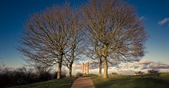 Tower Walk (spiderstreaky) Tags: hill green branches fresh branch beacon path horizon lightroom natural british tower historic sun worcestershire high tree sunshine trees footpath architecture cotswold top track yellow big detail summer broadway beauty clear nikon fishhill classic landmark castle blue golden beautiful nature clouds light cotswoldway countryside folly line