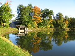 Herbst- Spiegelung (germancute) Tags: autumn pond herbst