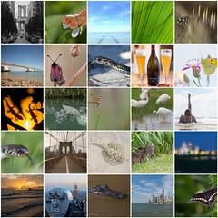 ...2015... (BJSmit) Tags: collage mosaic newyear happynewyear 2015 bighugelabs smitbj bjsmit