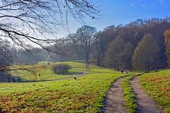Lovely December day (Caulker) Tags: hampsteadheath 11122016