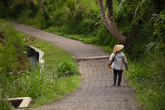 IMG_4387 (FelipeDiazCelery) Tags: indoensia bali arroz camposarroz ricefields workers farmer granjero trabajador granja verde green