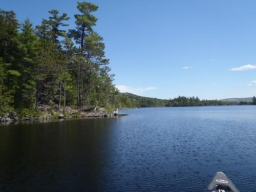 Pierce Pond - www.amazingfishametric.com