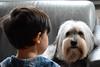 20161221_JK_NIKON D7100_DSC_1406 (Jan de Klepper) Tags: gezin huisdieren milou