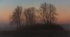 Waiting for the morning sun (marcmayer) Tags: winter fog mist tree baum nebel morning sun sunrise sonnenaufgang nikon d5200 nikkor 50mm f18 germany deutschland natur nature silhouette orange red color colorful