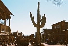 Draw With A Saguaro   Say When (Marc Rodriguez 24) Tags: kodak ultramax gold 400 pulled nikon f3 f3hp 50mm 14 5014 ais prime lens 35mm c41 color negative film grain analog analogue goldfieldghosttown apachejunction arizona old western town saguaro cactus desert west