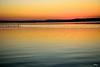 Otra mirada... (ZAP.M) Tags: costa laalbufera naturaleza nature atardecer nikon nikond5300 zapm mpazdelcerro comunidadvalenciana españa flickr