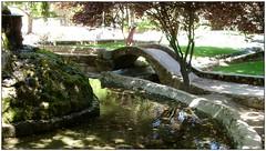 Subiendo el puente (margabel2010) Tags: personas niños niña puentes puente parques parquesyjardines jardinesyparques airelibre canal agua aguadulce cemento solysombra árbol árboles césped sombrero piedras
