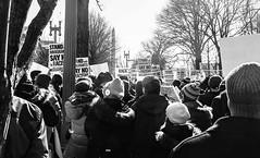2017.02.04 No Muslim Ban 2, Washington, DC USA 00405