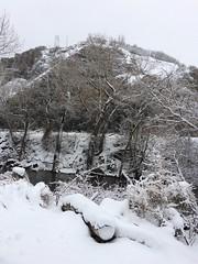 IMG_2204 (augiebenjamin) Tags: winter provocanyon mountains orem provo lindon utah snow clouds trees sky byu brighamyounguniversity art