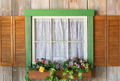 indoors Outdoors (giantmike) Tags: decorations epicsystemscorporation flower preparations wedding art window