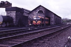 1987 Sligo shed (40065) Tags: ireland cie ie aclass