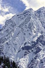 Snow 6 ,,, (Bijanfotografy) Tags: nikon nikond800 nikon180mm28afd nikon180mm28d india kashmir jammukashmir sonamarg snow mountain