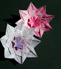 Flowery star (Var B) (modular.dodecahedron) Tags: tomokofuse origami star