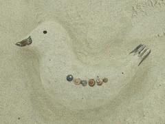 sand birdie (underwater_thing) Tags: sea beach sand seagull baltic seabird morze plaa mewa sandbird