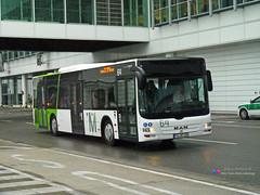 MAN Lion's City A21 - Aeroground 64 (Pi Eye) Tags: man bus munich münchen airport shuttle flughafen muc autobus aéroport a21 transfert eddm lionscity aeroground