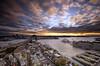 Wings Of A Dove (EmeraldImaging) Tags: seascape rooftop sunrise harbour sydney australia nsw sydneyharbour sydneyoperahouse sydneyharbourbridge sydneycity thecoathanger fourseasonshotelsydney coathangersydney