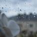 Light raindrops