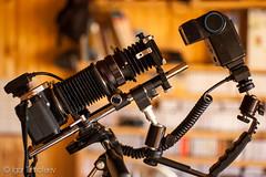 IMGP1586.jpg (cmexonaT) Tags: film pentax takumar scan 16mm bellows copier 16mmfilm