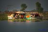 Mohana (Sindhi tribe) (TARIQ HAMEED SULEMANI) Tags: travel summer tourism colors canon fisherman culture sensational sindh tariq mohana supershot concordians sulemani tariqhameedsulemani mohano