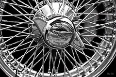 jag-wired... (Stu Bo.. tks for 8 million views) Tags: light blackandwhite bw sunlight sexy beautiful wheel canon vintage reflections photography classiccar vintagecar shadows ride oneofakind wheels dreamgarage smooth icon oldschool chrome warrior jaguar legend goodtimes silky bestofshow coolcar showcar wirewheels vintageautomobile dreamcar slammin blackwhitephotos worldcars onewickedride hangingoutwiththefamily certifiedcarcrazy sbimageworks canonwarrior