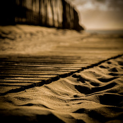 Sand and wood (florian harmel) Tags: hourtin