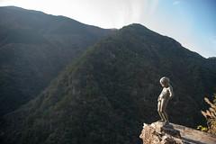 TOKUSHIMA DAYS - Iya valley (junog007) Tags: autumn mountain tree statue japan river nikon outdoor valley shikoku nano tokushima autumnalleaves d800 iya 2470mm nanocrystalcoat
