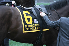 JCGC Day 2015 (first_dude) Tags: horseracing thoroughbred belmontpark