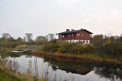 Autumn (Maria Eklind) Tags: city sky mist reflection nature water fog se europe autum sweden outdoor urbannature sverige malmö höst dimma ribersborg skånelän
