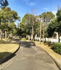 Porto de Nagoya. (marcelo.nakazaki) Tags: city parque cidade japan asia outdoor banco porto jardim nagoya praa rua arvores japon docas  cais japao aoarlivre