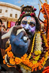 Shiva (Rajneesh Panwar) Tags: blue portrait people india temple intense god procession shiva pushkar rajasthan shiv brahama