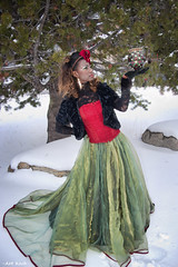 Yuletide Colors (All About Light!) Tags: christmas fashion glamour snowprincess longdresses arthurkochphotography yuletidecolors