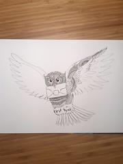 OIP- Owl in progress! #zendoodle #creative #drawing #ink #pen #zentangle #owl #harrypotter #art #wip #traditionalart #lineart #doodleart #details (Tekslus) Tags: lineart ink doodleart harrypotter wip zentangle pen details zendoodle drawing creative art owl traditionalart