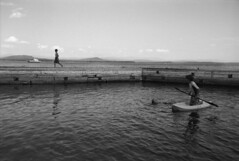 Toward Vermont (F. Neil S.) Tags: lakechamplain vermont jetty breakwater carferry boys swimminghole kayak midsummer coolingoff ilfordpanf negative 35mm film xtol selfdev nikonf100 bicycletouring sails greenmountains bwfp