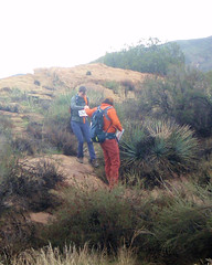 031 A Helping Hand (saschmitz_earthlink_net) Tags: 2017 california orienteering vasquezrocks aguadulce losangelescounty laoc losangelesorienteeringclub
