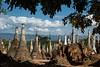 DSC_8804 (Ignacio Blanco) Tags: myanmar inle lake shan state boats fishermen floatingvillages sunset cultural stupa shrine indein pindaya cave golden buddha u min pagoda shweuminpagoda