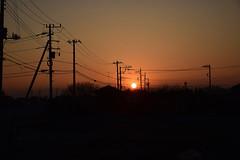 20170228_005_2 (まさちゃん) Tags: 電柱 電線 夕暮れ時 夕陽 シルエット silhouette 長閑