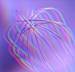 Whisked up (Mazzlo) Tags: macromonday macro contraption whisk whisked colours colourful curves utensil nikon d5500 mazzlo maureenlong