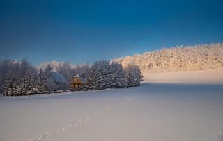 Das letzte Winterbild