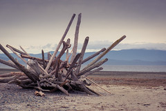 Rathtrevor Driftwood Sculpture (glendon27) Tags: beach driftwood landscape mountain ocean rathtrevor sculpture vancouverisland parksville britishcolumbia canada ca