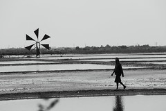 Saltfarm (g e r a r d v o n k เจอราร์ด) Tags: art asia asian backlight blackandwhite canon canon5d3 expression eos earthasia flickrsbest fantastic flickraward grey lifestyle land monochrome molens ngc newacademy outdoor photos pinnaclephotography people refection reflection rural this travel totallythailand thailand thai unlimited uit whereisthis where water yabbadabbadoo y