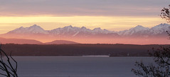 Wolkengluehenpanoramaaufnahme (RPahre) Tags: sunset olympicmountains olympics pugetsound seattle shoreline clouds