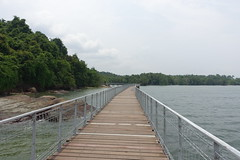 Palau Ubin, Singapore (attard_luke) Tags: singapore asia isolation palauubin rainforestisland