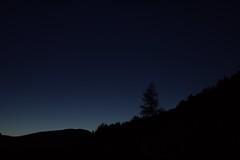 Twilight